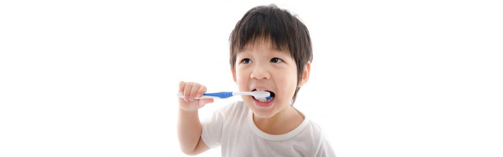 Dental Fillings in Westwood, MA